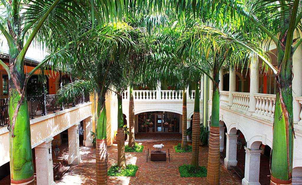 THE PALM COURTYARD
